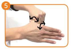 ポイント手洗い手順5.pngのサムネイル画像