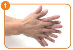 手洗い手順1.png