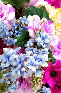 花.jpgのサムネイル画像