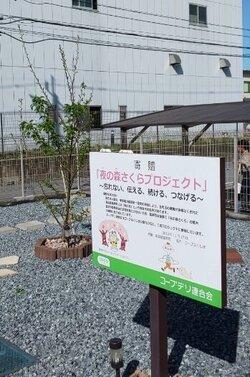 2021sakura-2.jpg