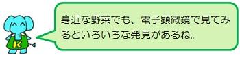 20200831_K7.jpg