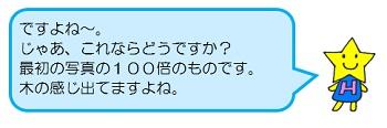 hoshi4.jpg