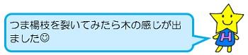 hoshi7.jpg