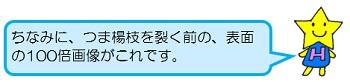 hoshi8.jpg